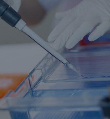 Thalassemia Identification